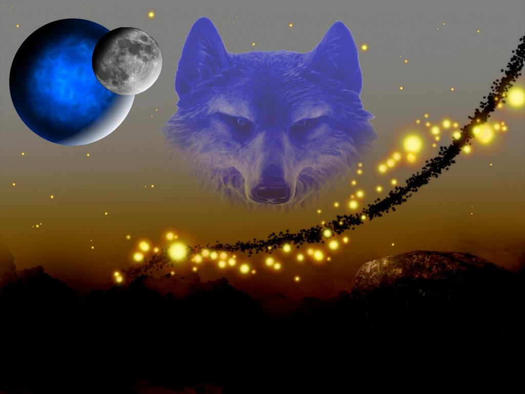 Loup ciel dans Fond d'écran fecran